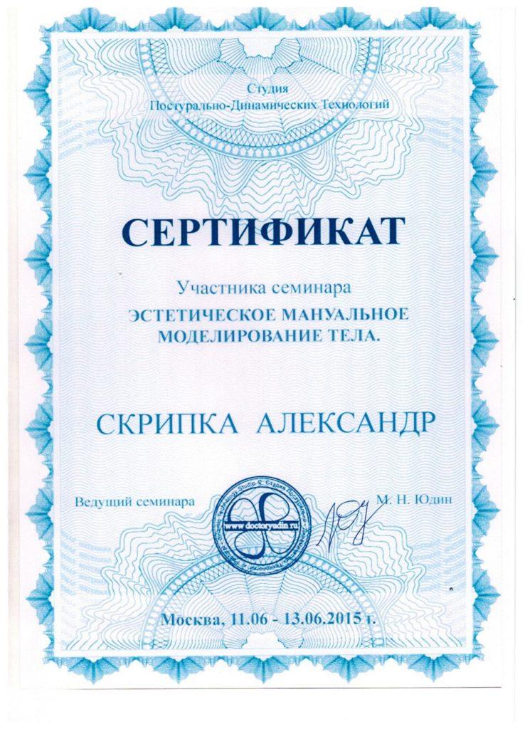 Сертификат Скрипка